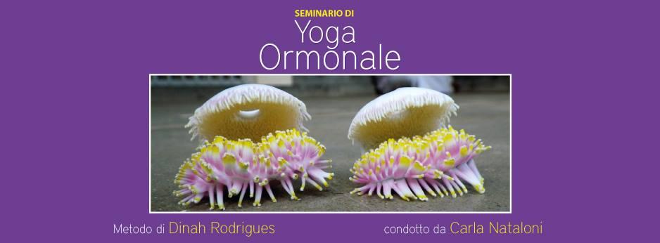 Seminario di Yoga Ormonale secondo il metodo di Dinah Rodrigues a Napoli