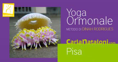 MINI CORSO di Yoga Ormonale | Livello 1 e 2